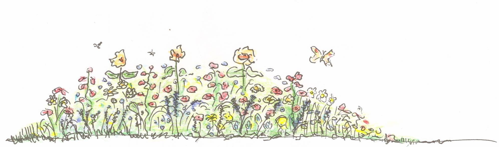 bande fleurie por abeilles