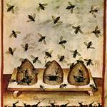 apiculture médiévale