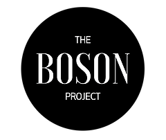 [ENTREPRENEURIAT] The Boson Project